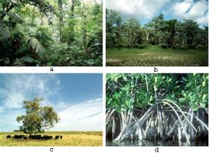 Pengertian dan Pengelompokan Sumber Daya Alam